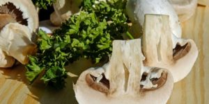 Cogumelos não devem ser embalados a vácuo